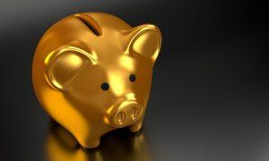 gold pig bank